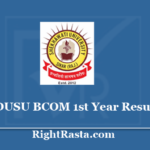 PDUSU BCOM 1st Year Result 2020 - Shekhawati University B.Com First Year Results