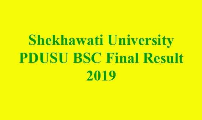 Shekhawati University PDUSU BSC Final Result 2019
