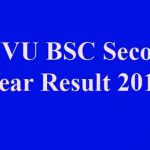 JNVU BSC Second Result 2019