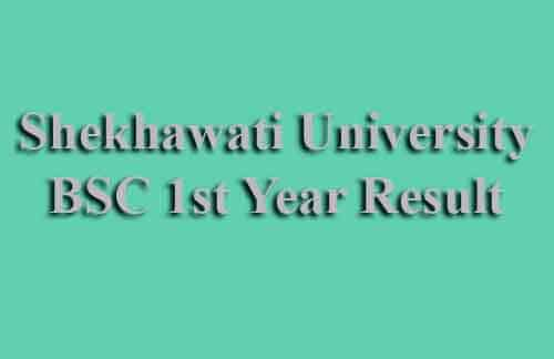 PDUSU BSC First Year Result