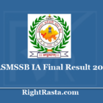 RSMSSB IA Final Result 2019 - Download 4th Merit List Against Non Joiner Candidates