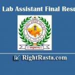 RSMSSB Lab Assistant Final Result 2019 - Download Rajasthan RSSB LA Final Selected Candidates List PDF
