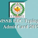 RSMSSB LDC Typing Test Admit Card 2019