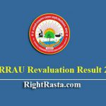 DSRRAU Revaluation Result 2019 | Download BAMS 3rd Year Results