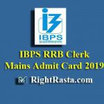 IBPS RRB Clerk Mains Admit Card 2019