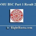 LNMU BSC Part 1 Result 2019