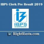 IBPS Clerk Pre Result With Marks 2019 | Download IBPS CRP Clerk IX Prelims Exam Results