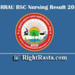 DSRRAU BSC Nursing Result 2019   Download B.SC Ayurved 1st 2nd 3rd 4th Exam Results