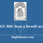 HNGU BSC Sem 5 Result 2020 - Download B.Sc. 5th Semester 2019 Exam Results @ ngu.ac.in