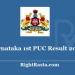 Karnataka 1st PUC Result 2020 - Download DKPUCPA Suvidya Exam Results result.bspucpa.com