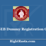 BSEB Dummy Registration Card 2021 Download for Bihar Board Class 10th, 12th Admit Card