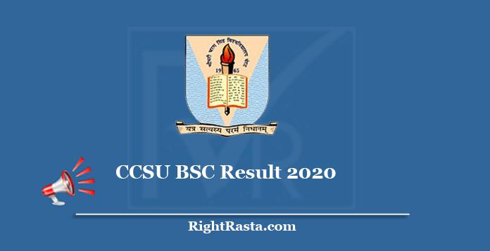 CCSU BSC Result 2020