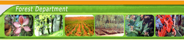 Delhi Forest Department Result 2020