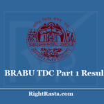 BRABU TDC Part 1 Result 2020 (Out) Download Bihar University Exam Results