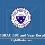 DBRAU BSC 2nd Year Result 2020 (Out) Download B.Sc Part 2 Results