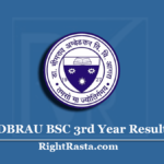 DBRAU BSC 3rd Year Result 2020 (Out) | Download B.Sc Part 3 Results