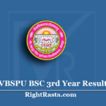 VBSPU BSC 3rd Year Result 2020 (Out) | Download B.Sc Final Results