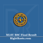 MLSU BSC Final Result 2020 (Out) | Download Udaipur University B.Sc 3rd Year Results