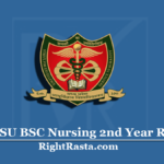 MPMSU BSC Nursing 2nd Year Result 2020 (Out) | Download B.Sc Nursing Results