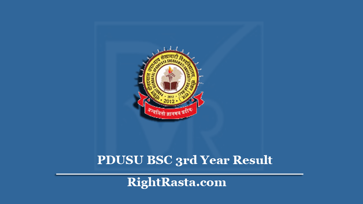 PDUSU BSC 3rd Year Result