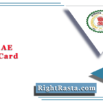 CGPSC AE Admit Card 2020 (Out) | Download Chhattisgarh SES Hall Ticket
