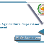 RSMSSB Agriculture Supervisor Recruitment 2021 | Apply For RSSB Vacancy